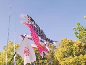広島県広島市中区薬研堀のヘルス オアシスの写メ日記 おはようございます画像